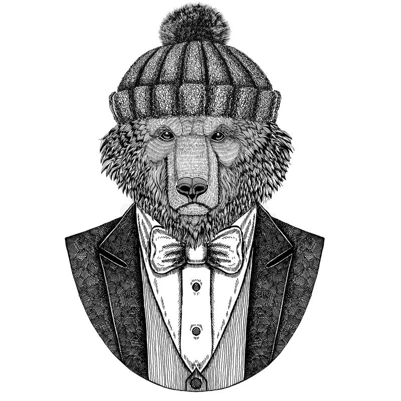 Brown niedźwiedzia rosjanina niedźwiedzia ręka rysująca ilustracja dla tatuażu, koszulki, logotyp Niedźwiadkowej jest ubranym kur ilustracja wektor