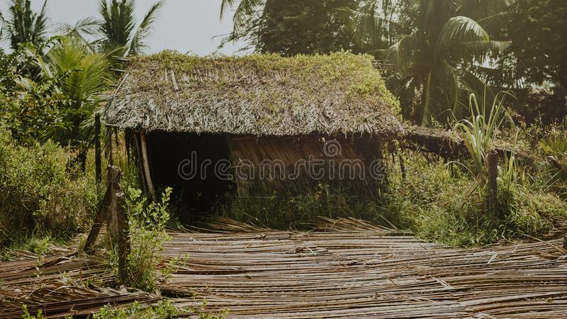Brown Nipa Hut Foto lizenzfreies stockbild