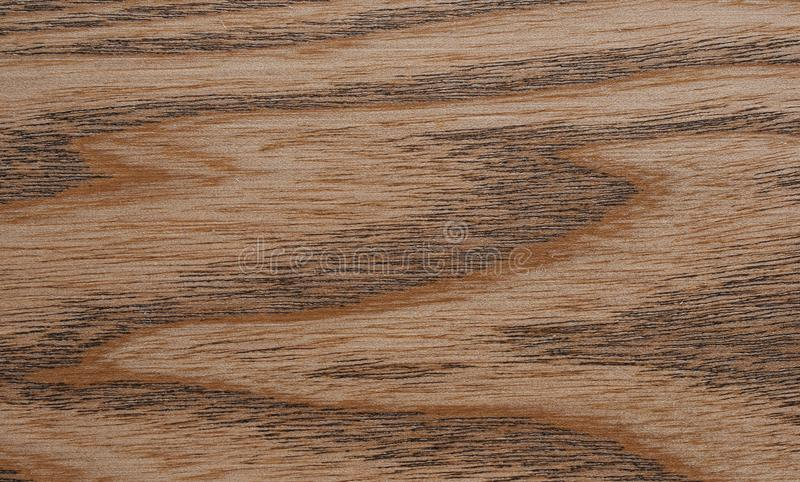 Brown oak wood texture royalty free stock image