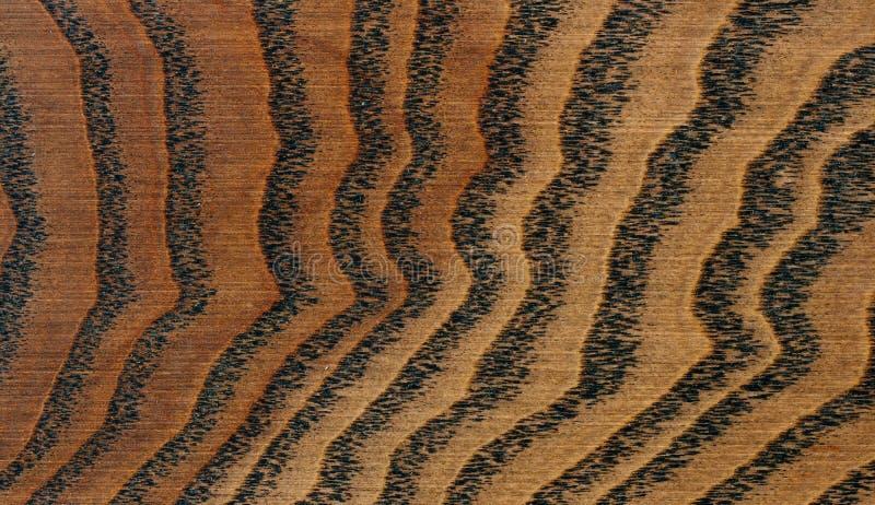 Brown oak wood texture stock image