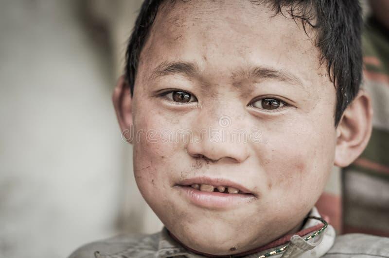 Brown observa en Nepal fotos de archivo