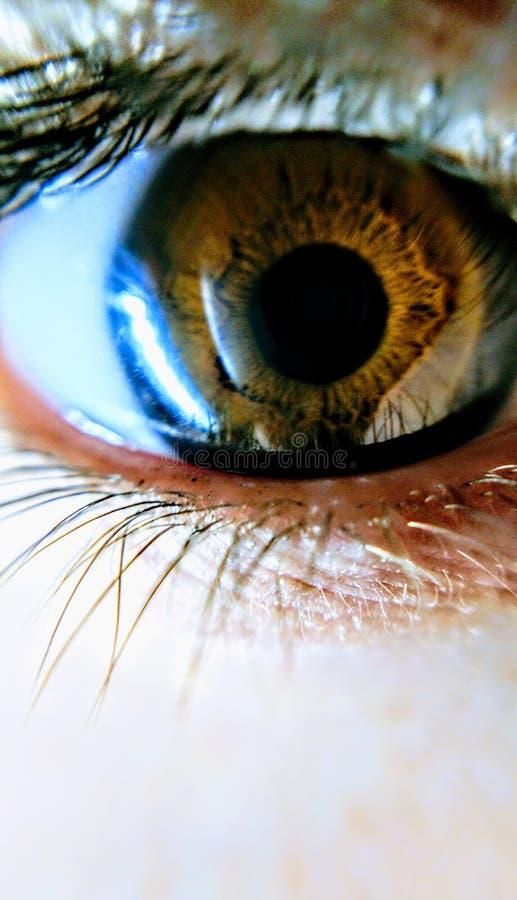 Brown oka dziewczyny irys fotografia stock
