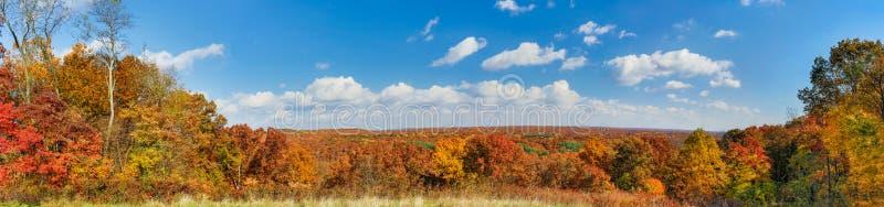 Brown okręgu administracyjnego jesieni panorama obrazy royalty free