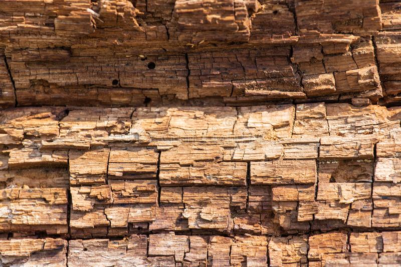 Brown Old wood texture. Abstract background, empty template stock images
