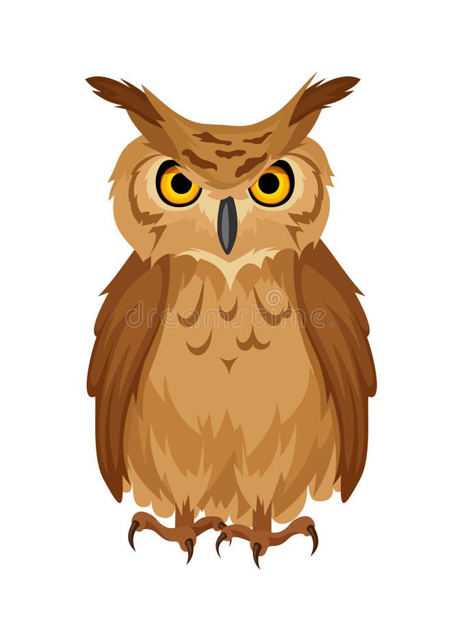 Brown owl. Vector illustration. Vector brown owl on a white background vector illustration