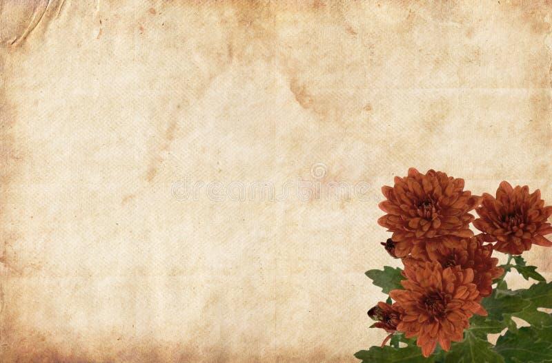 Brown-Papier mit roten Blumen stockfotografie