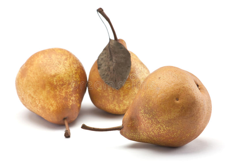 Download Brown pear stock photo. Image of white, image, shadow - 16234728