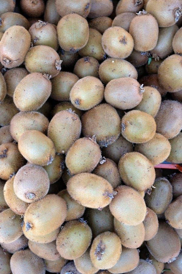 Brown peludo fresco Kiwi Fruit fotografía de archivo