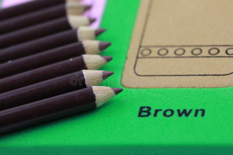 brown pencil crayon of row stock images