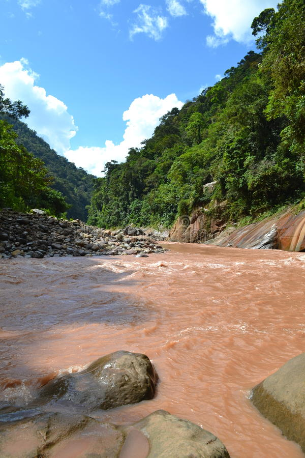 Brown Peruvian River royalty free stock images