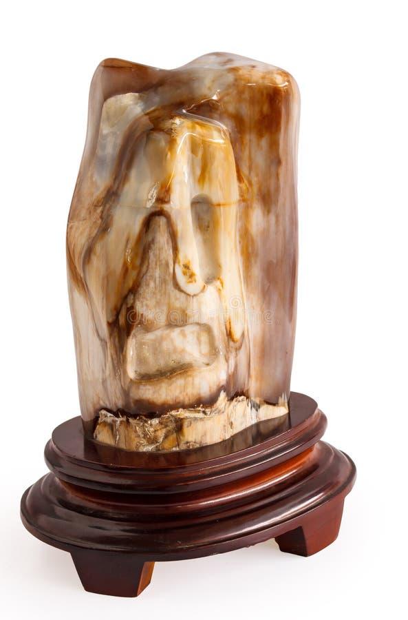 Brown petrificou a madeira no fundo branco fotos de stock royalty free