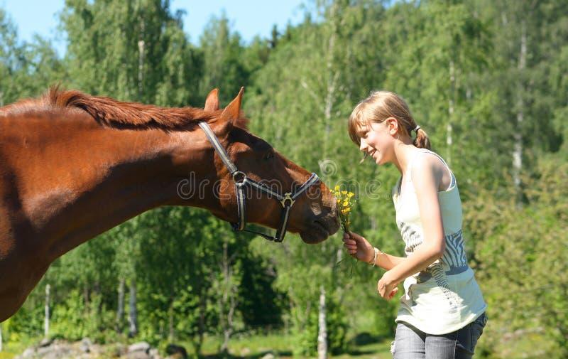 Brown-Pferd mit lächelndem Mädchen stockbild