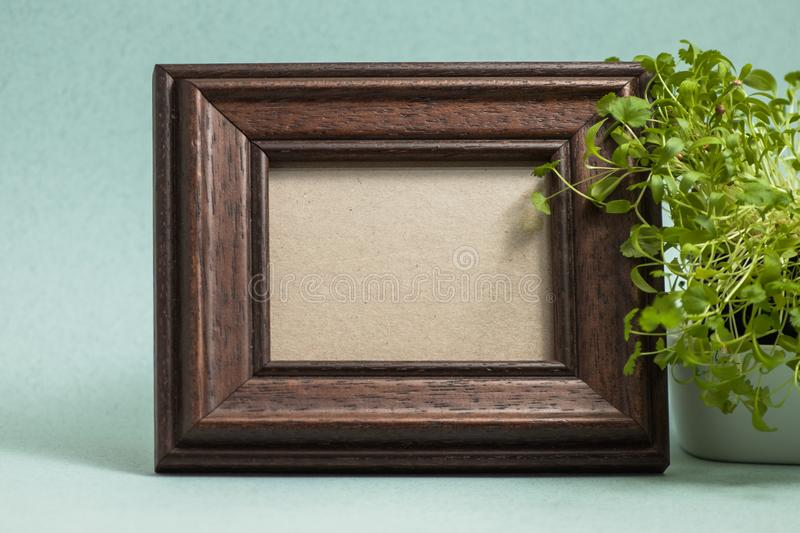 Brown photo frame with plant stock photography