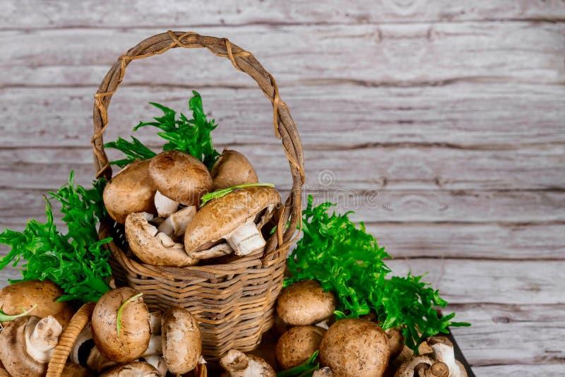 Brown portobello mushrooms in wicker wooden basket with grass decoration stock photos