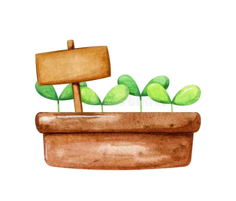 Brown pot with cute little sprout growing in it and a nameplate for inscription. Cartoon hand drawn style in watercolor stock photos