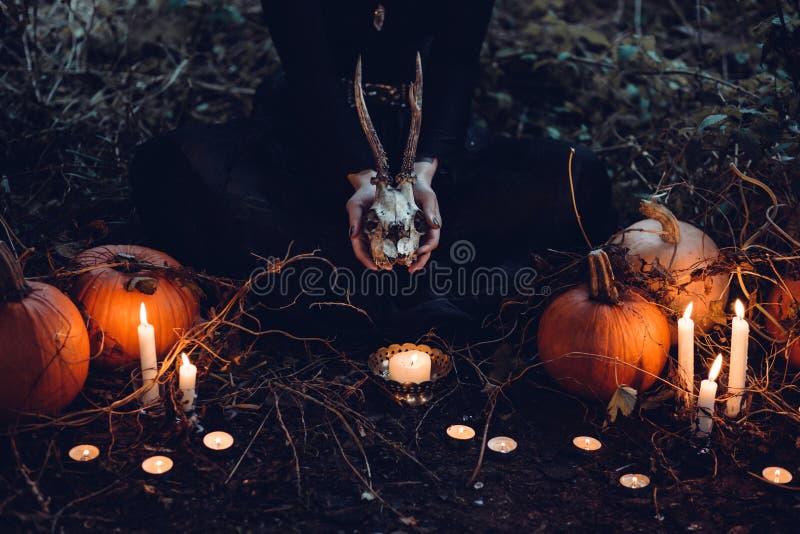 Brown Pumpkin Halloween Decor And Gray Skull At Grass Field Free Public Domain Cc0 Image