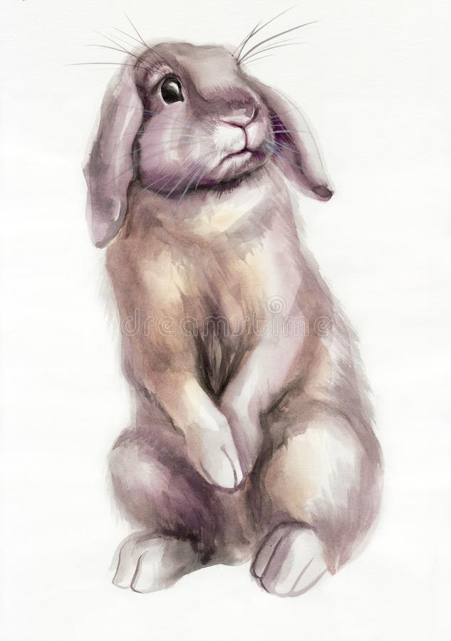Brown rabbit watercolor painting royalty free illustration