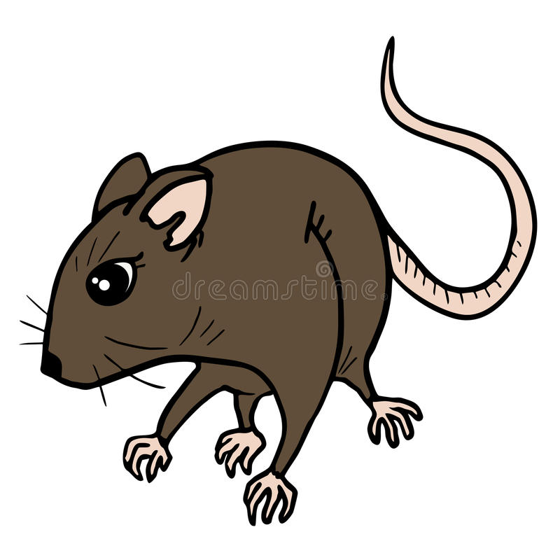 Download Brown rat stock photo. Image of darkness, label, cannibalism - 32279030