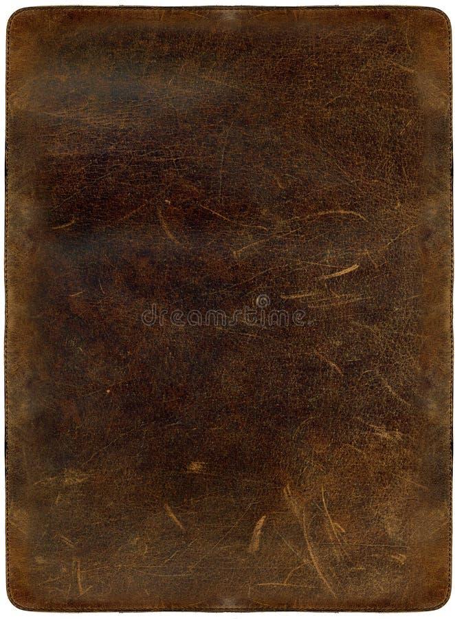 Brown a rayé le cuir photographie stock libre de droits