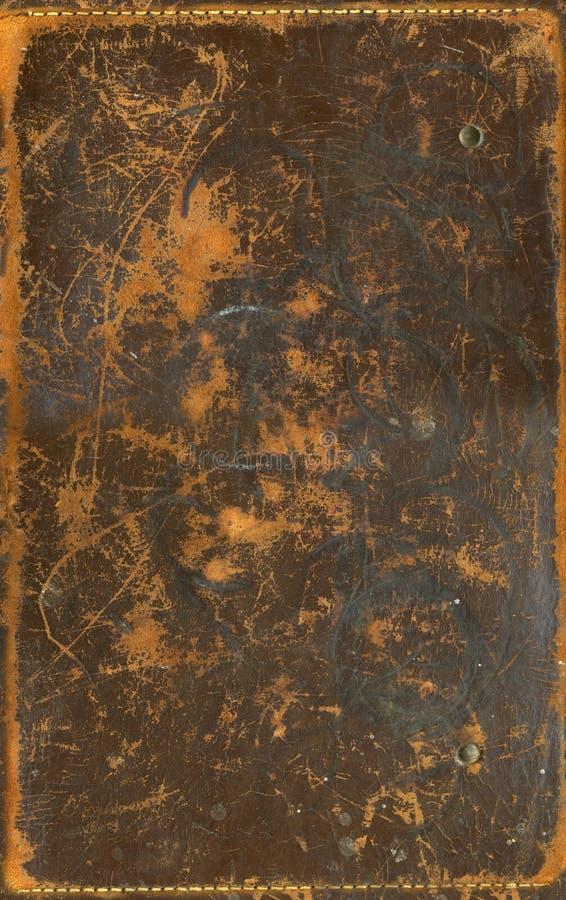 Brown a rayé le cuir images libres de droits