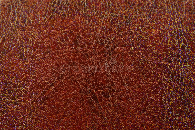 Download Brown red leather texture stock photo. Image of backdrop - 13575334