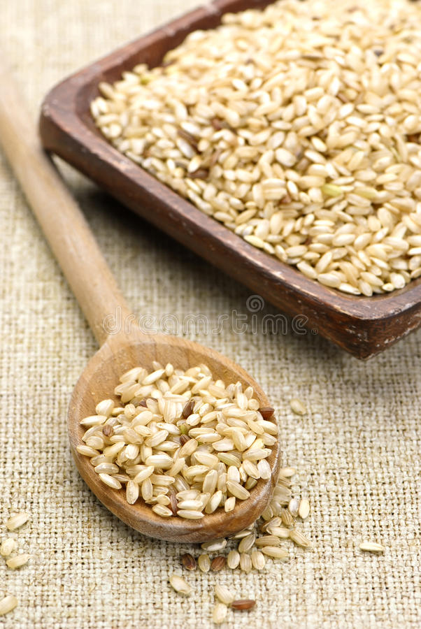 Download Brown rice stock image. Image of fiber, culture, dinner - 16239657