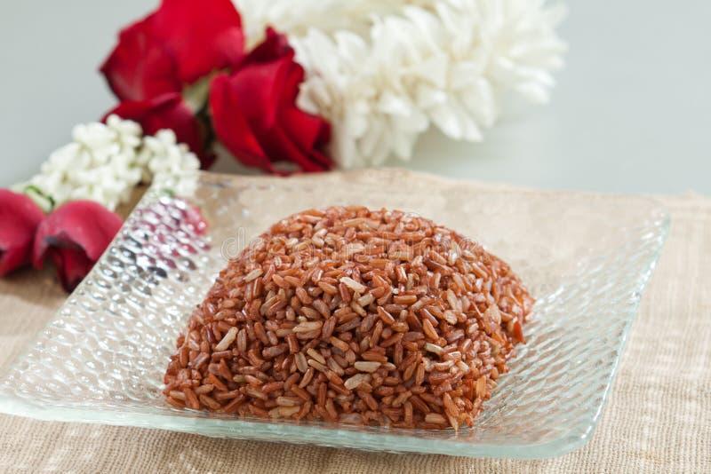 Thai brown rice on dish royalty free stock photos