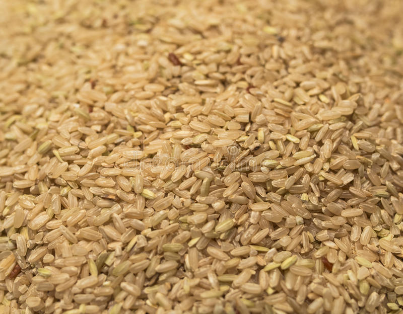Download Brown Rice stock image. Image of whole, rice, background - 34070159