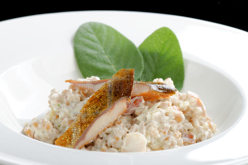 Brown rice risotto with smoked fish royalty free stock photos