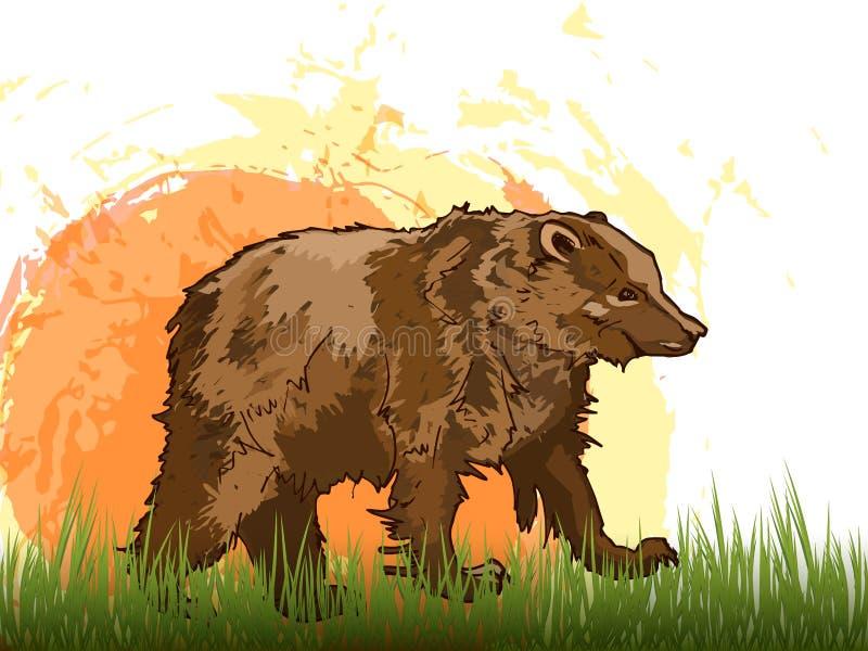 Brown riguarda un backgroun bianco illustrazione di stock