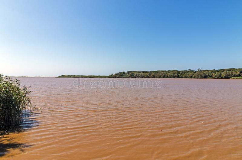 Brown Rippled Muddy Water Landscape em St Lucia Estuary foto de stock royalty free