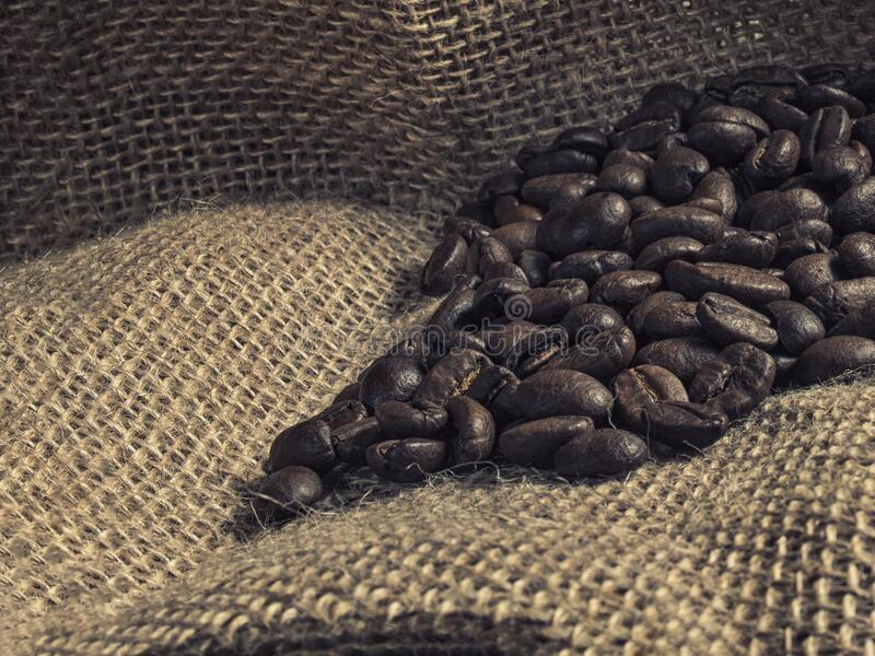 Brown roasted coffee beans on sackcloth stock images