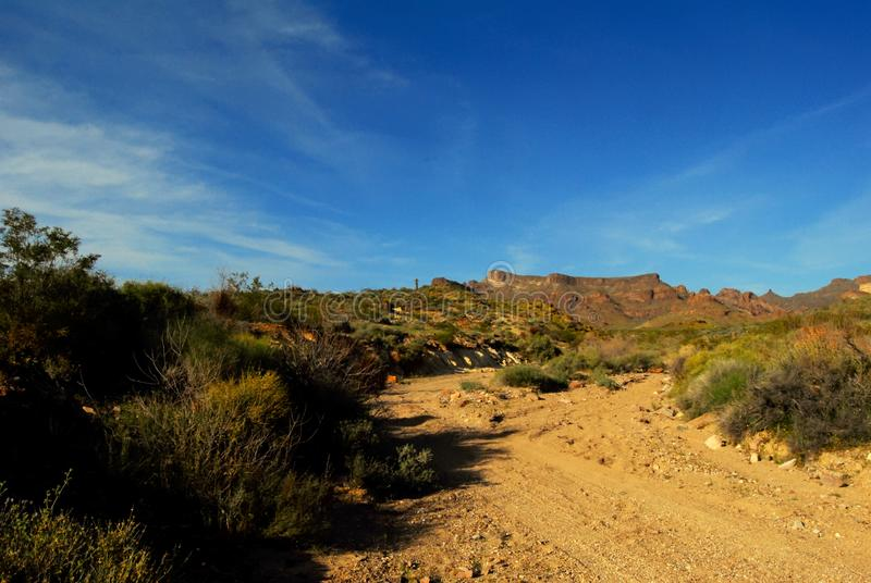 A arizona desert dirt road stock photos