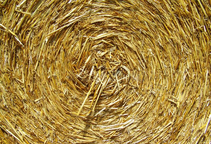 Brown Rolled Hay Free Public Domain Cc0 Image