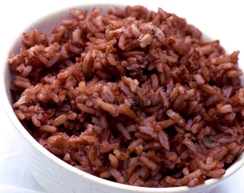 Brown ryż obrazy royalty free