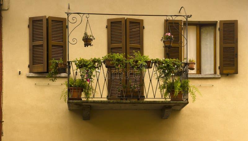 Brown shutters flowers, Varenna, Italy stock photo