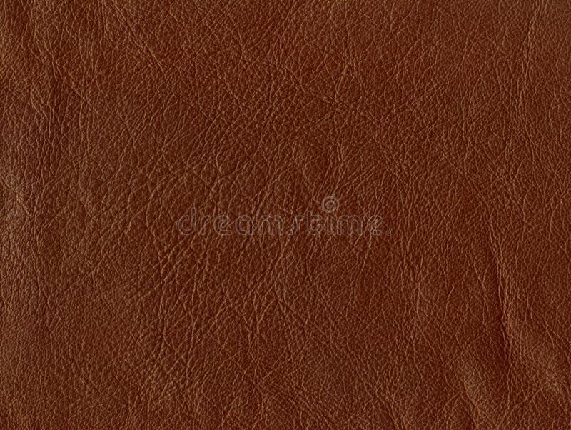 Brown skóra zdjęcie royalty free