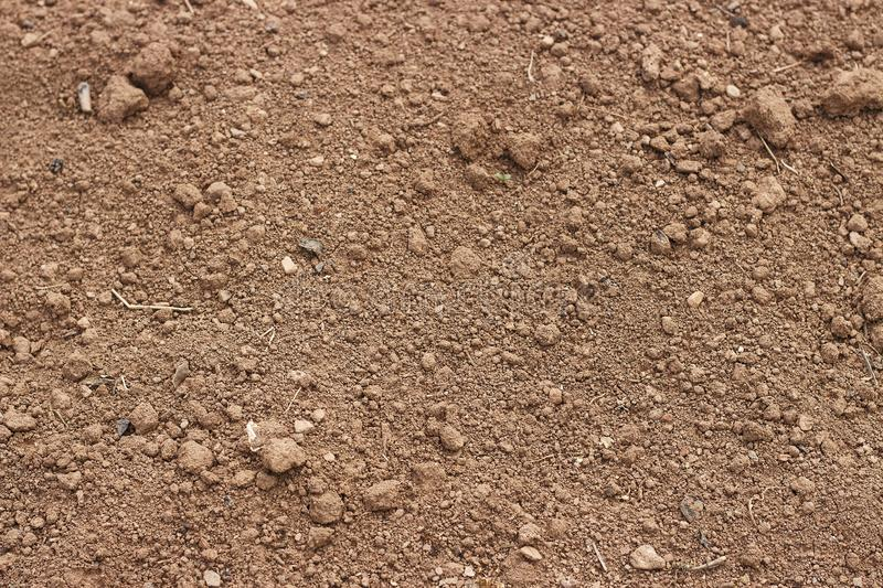 Brown soil close up, texture, natural background, view from above royalty free stock photos