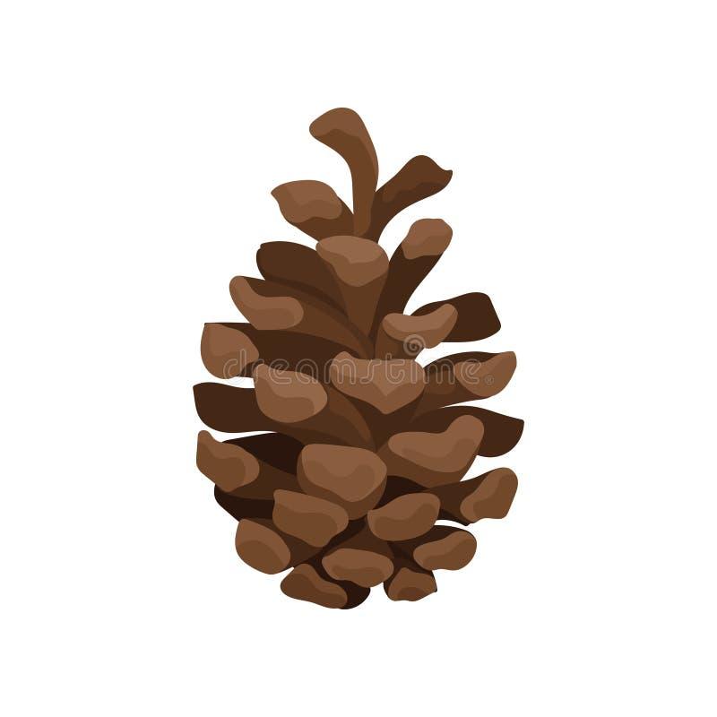 Brown sosny rożek Odrewniała owoc conifer drzewo Natury i botaniki temat Płaski wektorowy element dla Bożenarodzeniowej pocztówki ilustracji