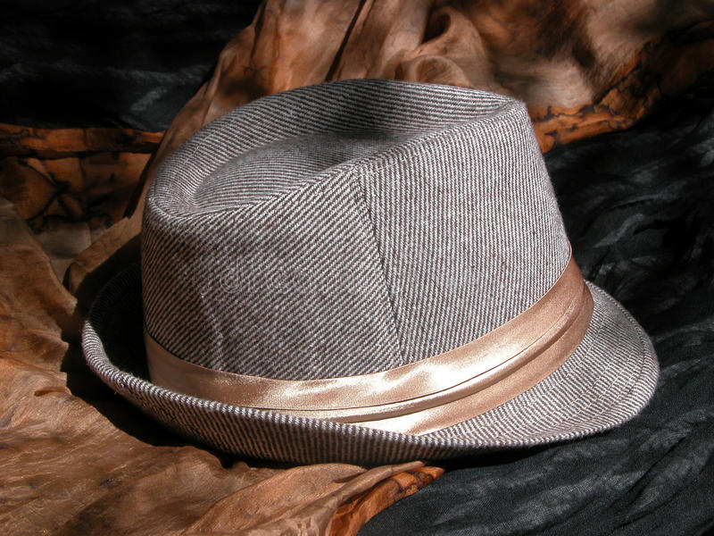 Brown Striped Fedora royalty free stock images
