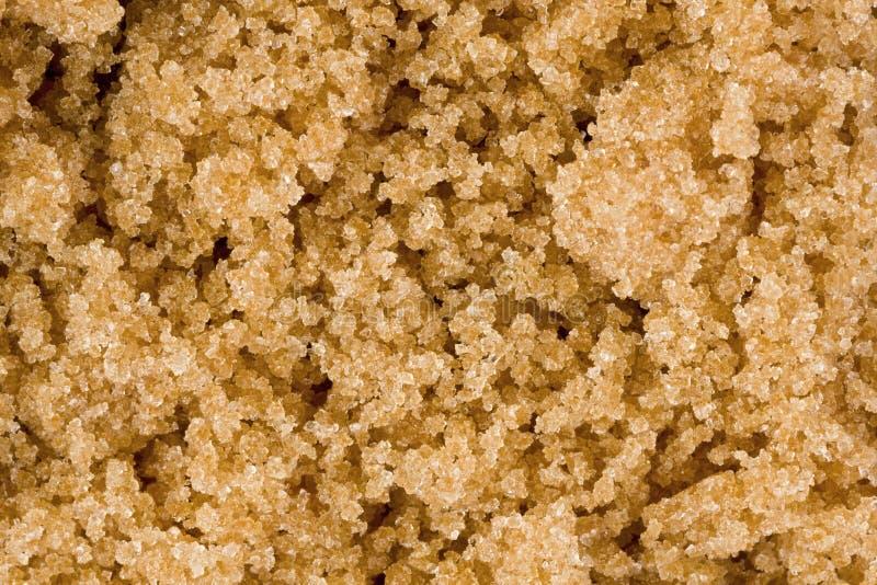 Download Brown Sugar stock photo. Image of food, texture, ingredient - 24042894