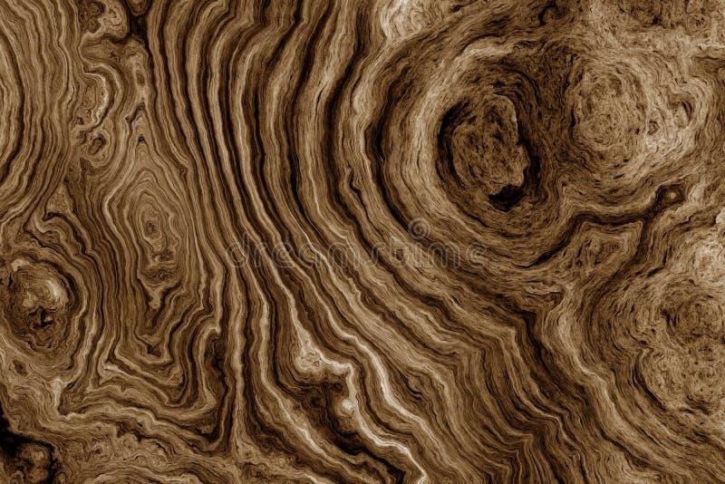 Brown tło z drzewo korzenia wzorem obrazy stock