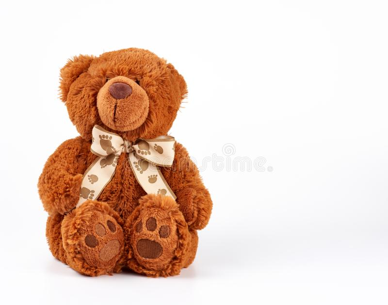 Brown teddy bear with a bow on his neck, white background. Copy space royalty free stock photos