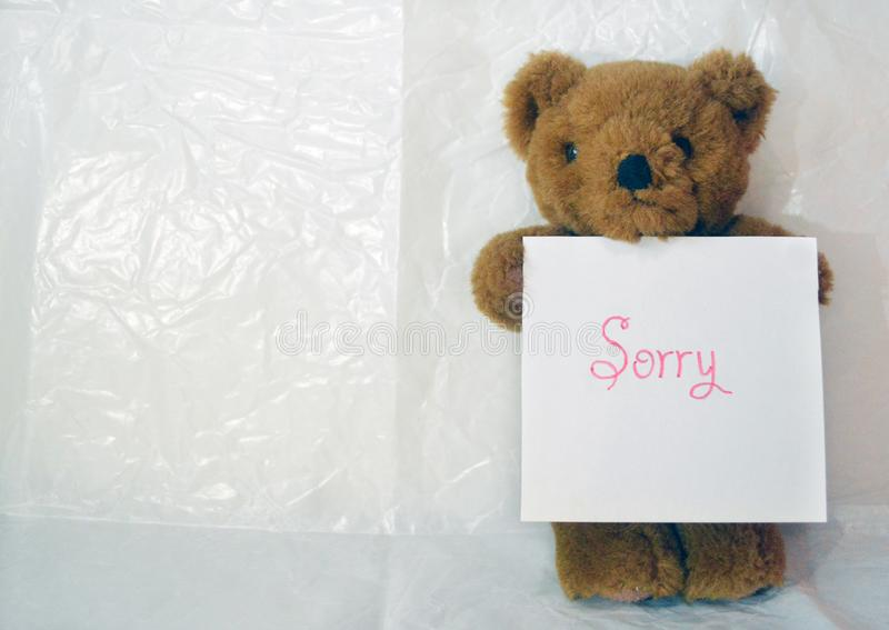 Brown teddy bear with a sign saying `Sorry` royalty free stock photography