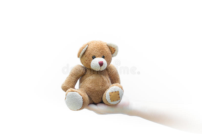 Brown teddy bear toy on human hand woman on white. Background stock photos