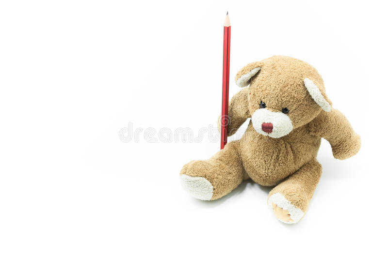 Brown teddy bear toy sitting holding red pencil on white background. For education background royalty free stock image