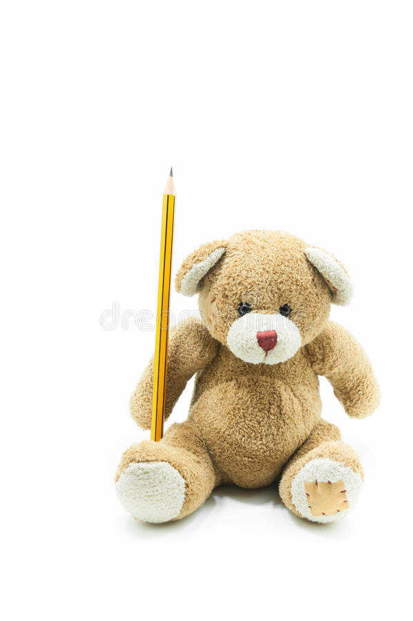 Brown teddy bear toy sitting holding yellow pencil on white background. For education background stock photography