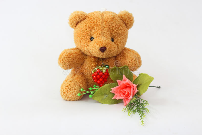Brown teddy bear on a white background. Brown teddy bear and pink roses on a white background stock photos