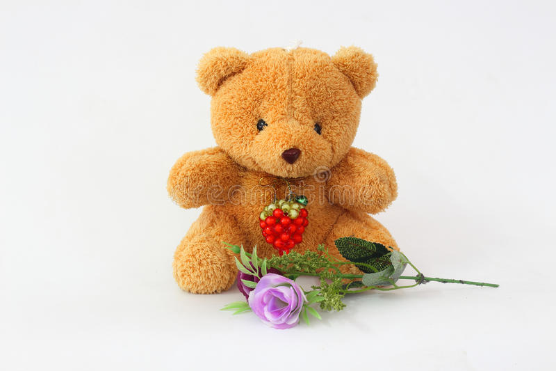 Brown teddy bear on a white background. Bear brown and purple roses on a white background stock photos