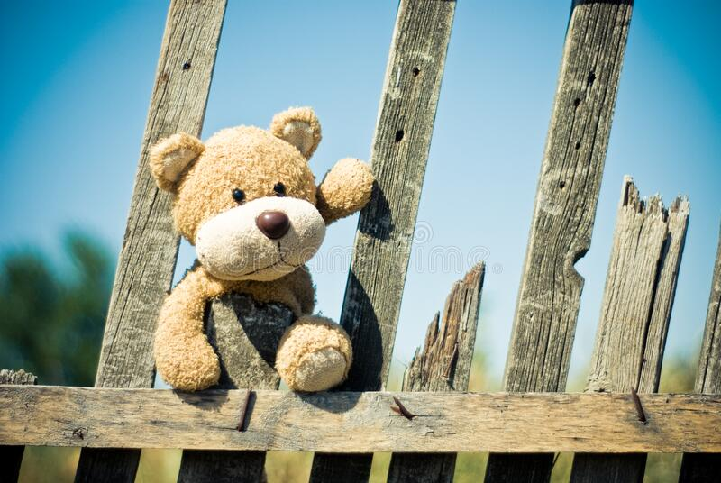 Brown Teddy Bear on Brown Wooden Fence stock photography